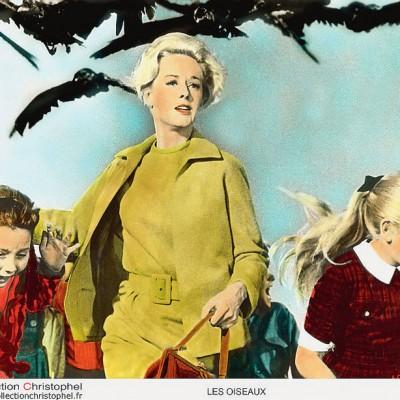 tippi-hedren-dans-les-oiseaux-1963_0_730_614